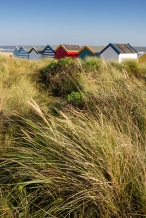 Wind swept beach huts