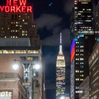 New Yorker and the Empire State Building