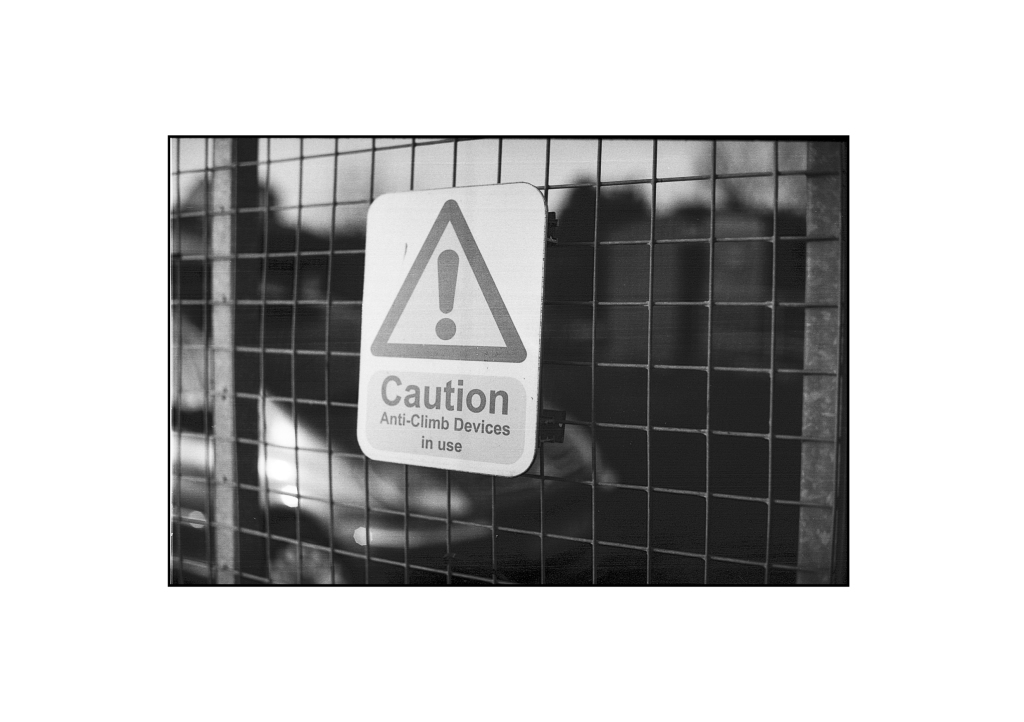 Caution - just look at the detail!  I think this was shot around f/8 at the minimum focussing distance.  Really happy with the detail and depth of field in this photo.