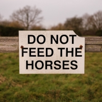 """Do Not Feed The Horses"", My First Outing with my X100V"