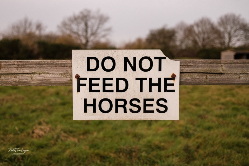 A sign on a farm post asking you not to feed the horses
