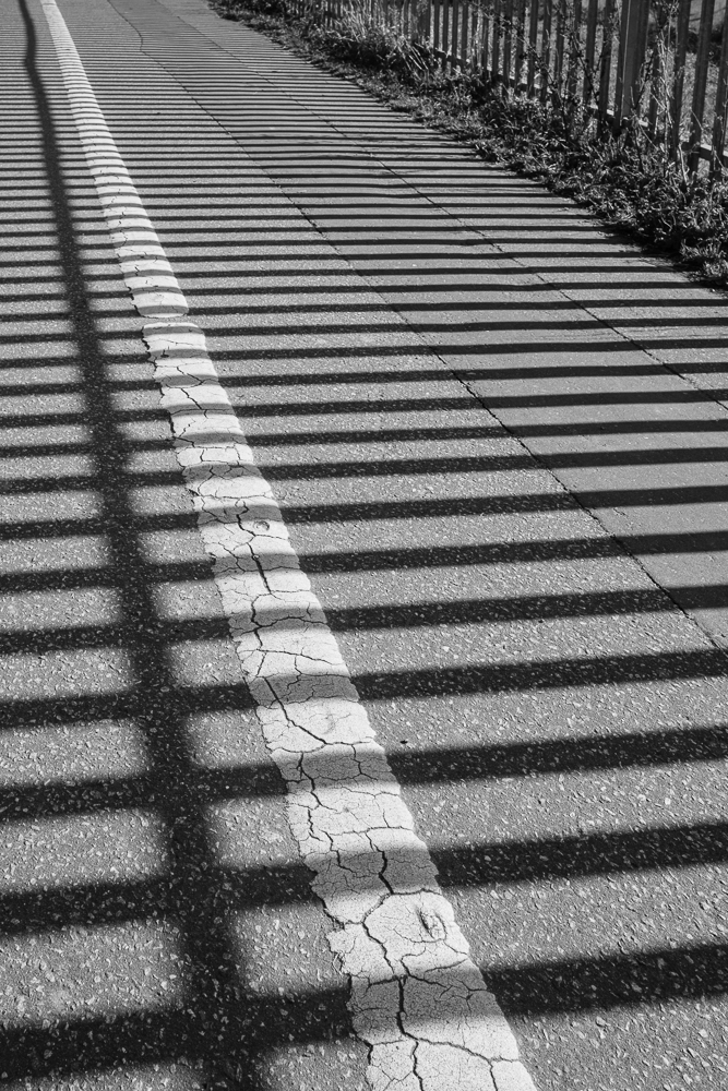 The shadows of the allotment railings paint a pattern on the pathway in the park