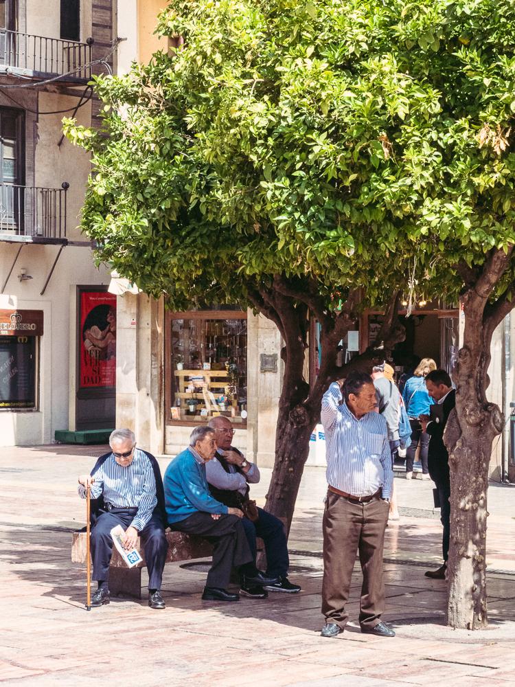 Men shelter under a tree in Malaga Spain
