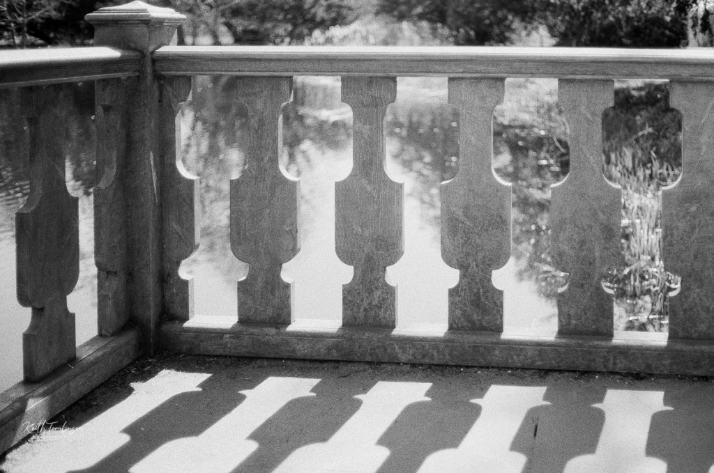 Black and white photo of the balustrade at the boat house on Belton House Lake.  Taken with my Yashica with Street Candy MTN 100 film.