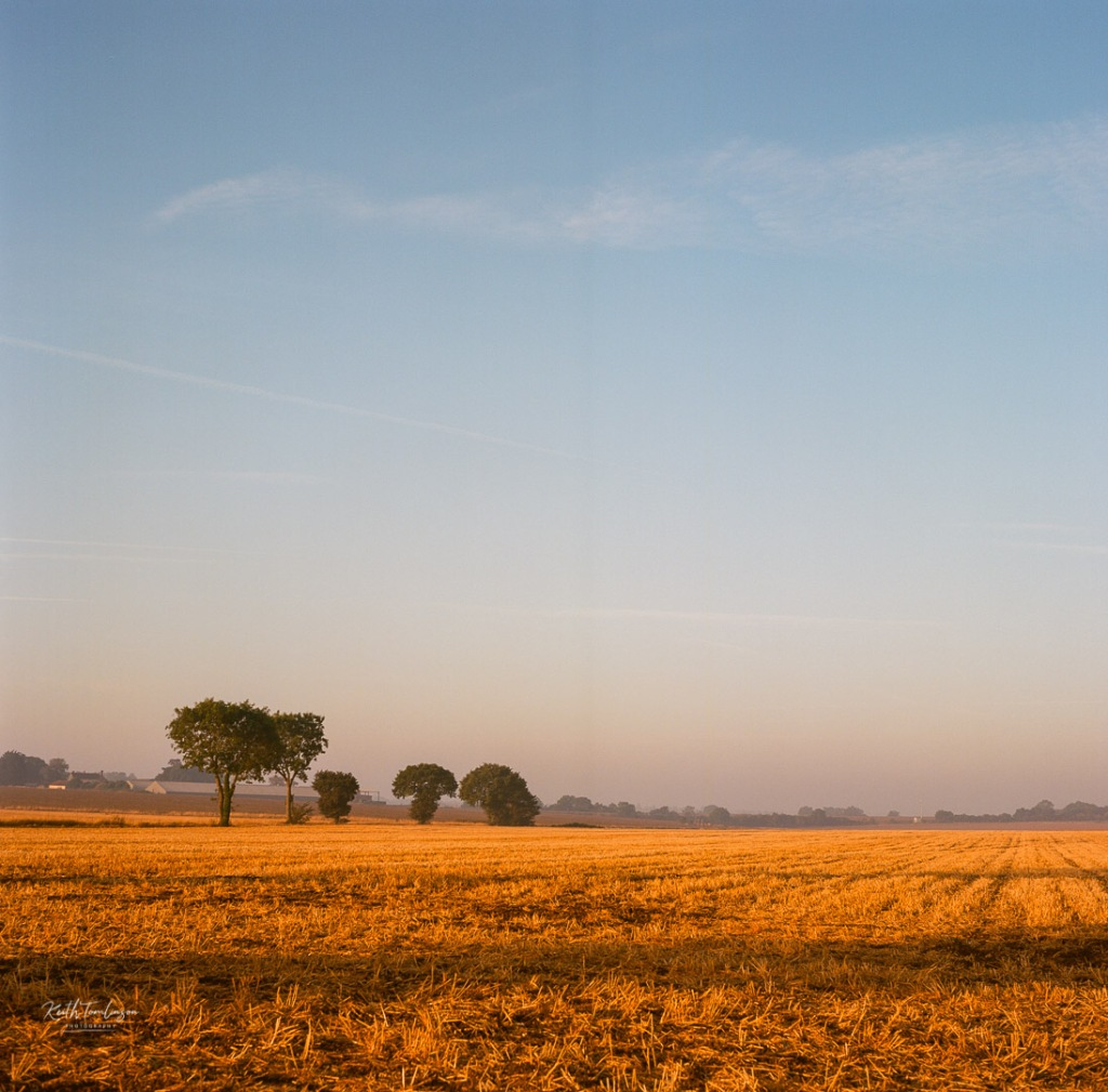 Sun rising over fields of ploughed wheat in Suffolk England with a row of tress on the horizon