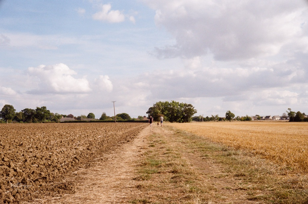 A couple of dog walkers walk along a field into the distance with their dog between them